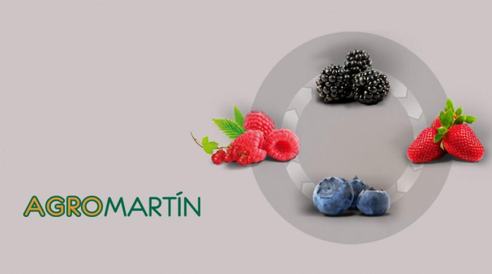 plus_frutas_fondo_02
